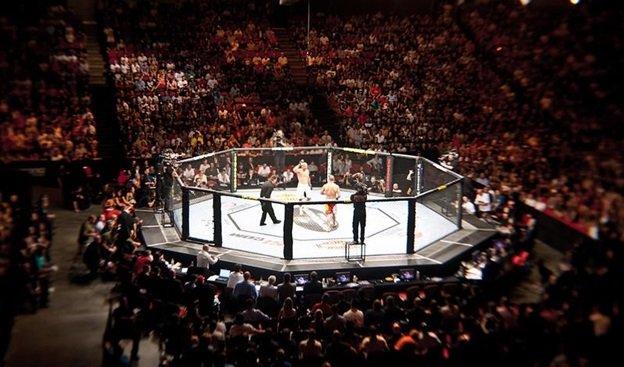 UFC 110